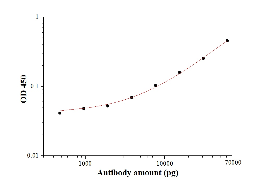 ELISA experiment of Recombinant protein using 28882-1-AP