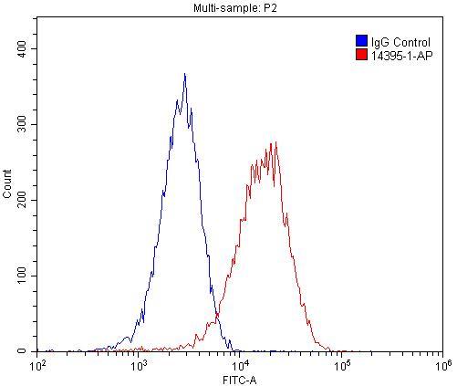 FC experiment of C2C12 using 14395-1-AP