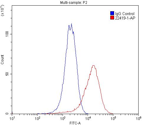 FC experiment of PC-3 using 22419-1-AP
