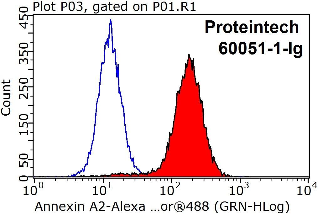 FC experiment of HeLa using 60051-1-Ig