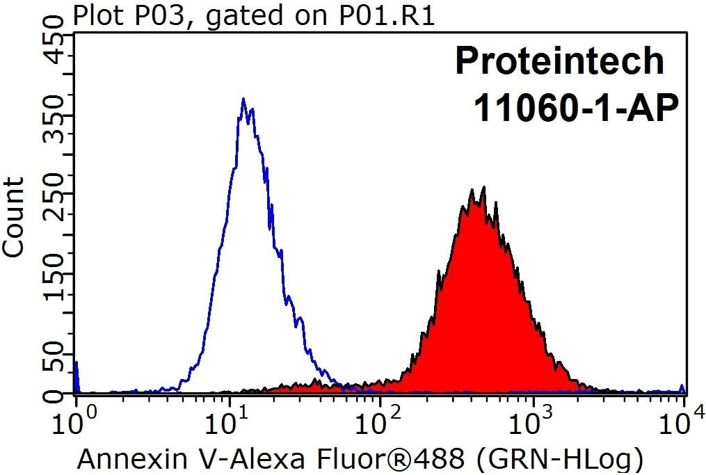 FC experiment of HeLa using 11060-1-AP