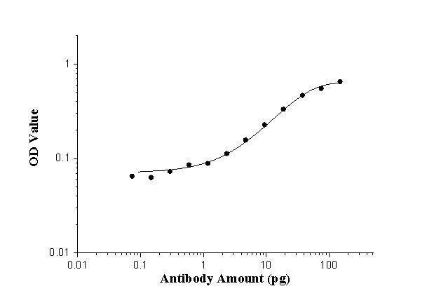 ELISA experiment of peptide using 24493-1-AP