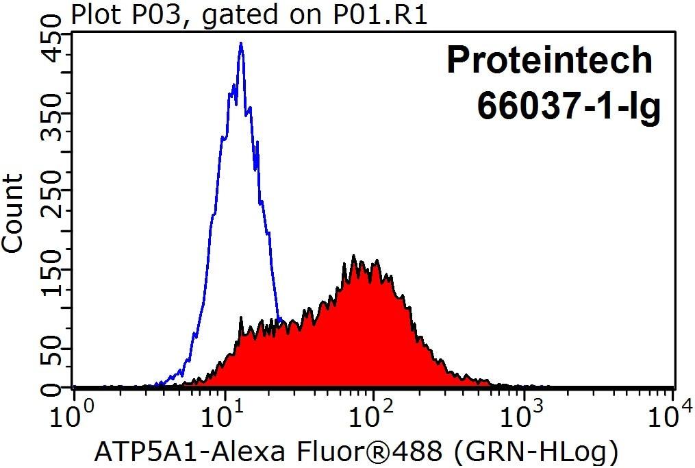 FC experiment of HeLa using 66037-1-Ig