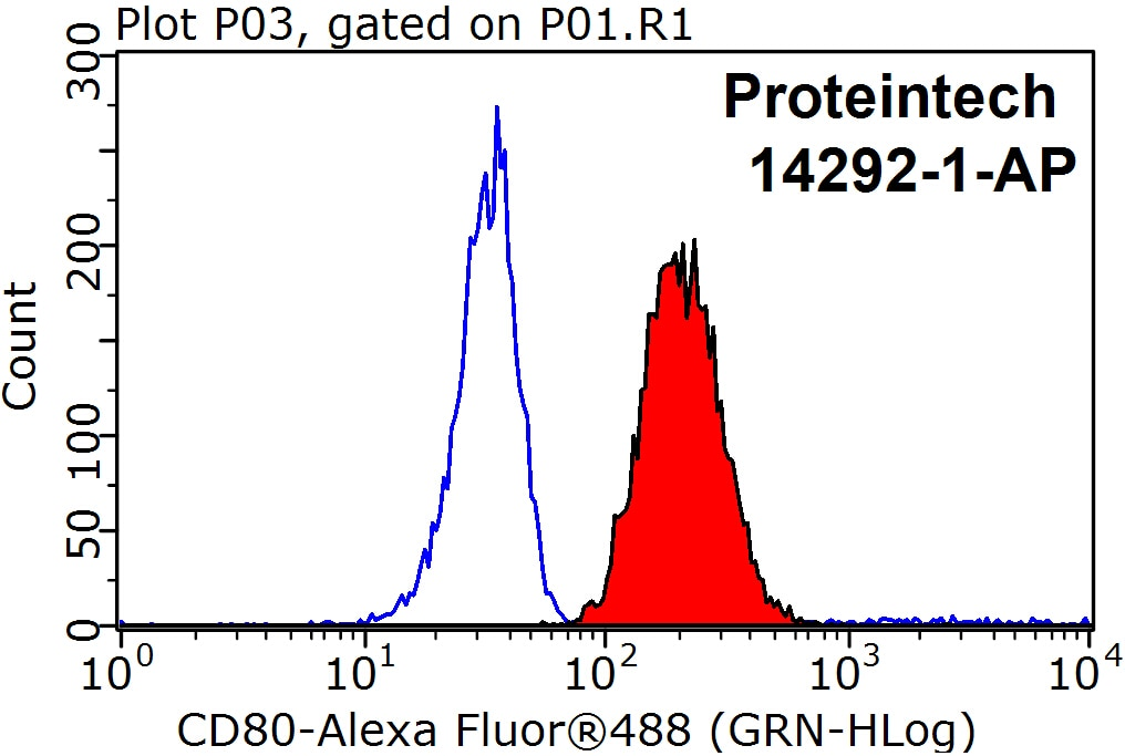 FC experiment of Raji using 14292-1-AP