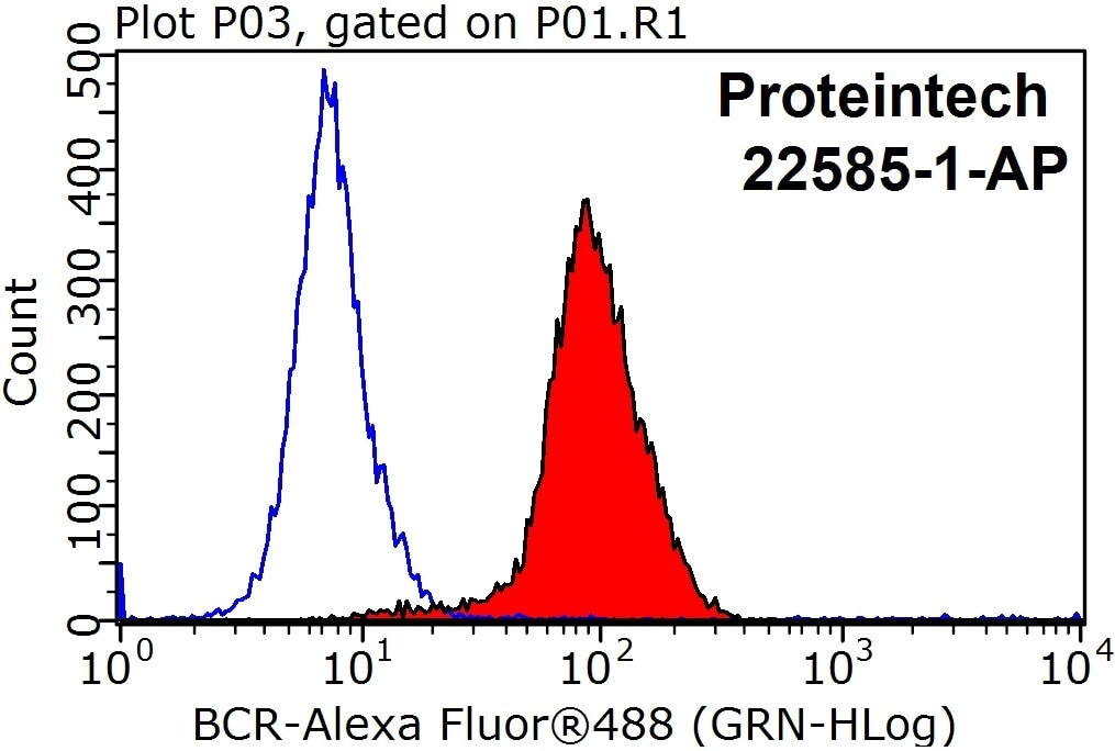 FC experiment of HepG2 using 22585-1-AP