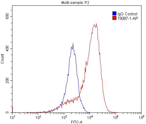 FC experiment of PC-3 using 19087-1-AP