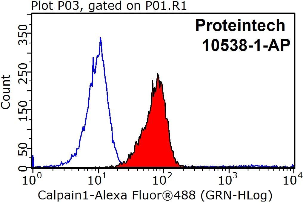 FC experiment of HeLa using 10538-1-AP