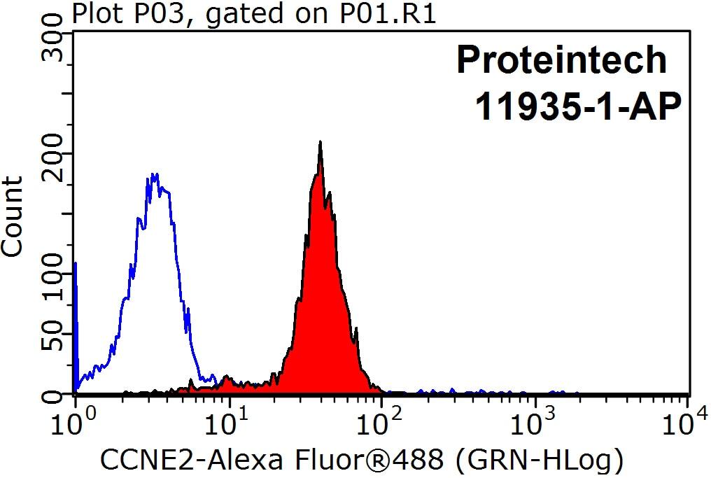 FC experiment of HeLa using 11935-1-AP