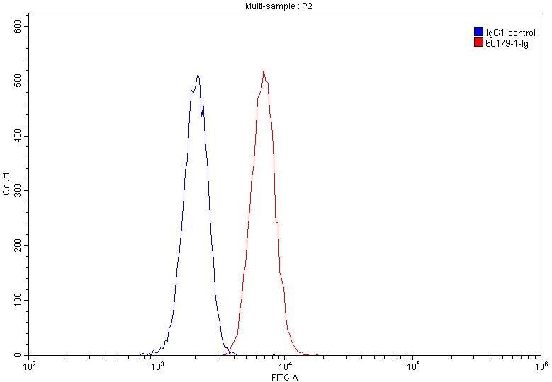 FC experiment of Jurkat using 60179-1-Ig