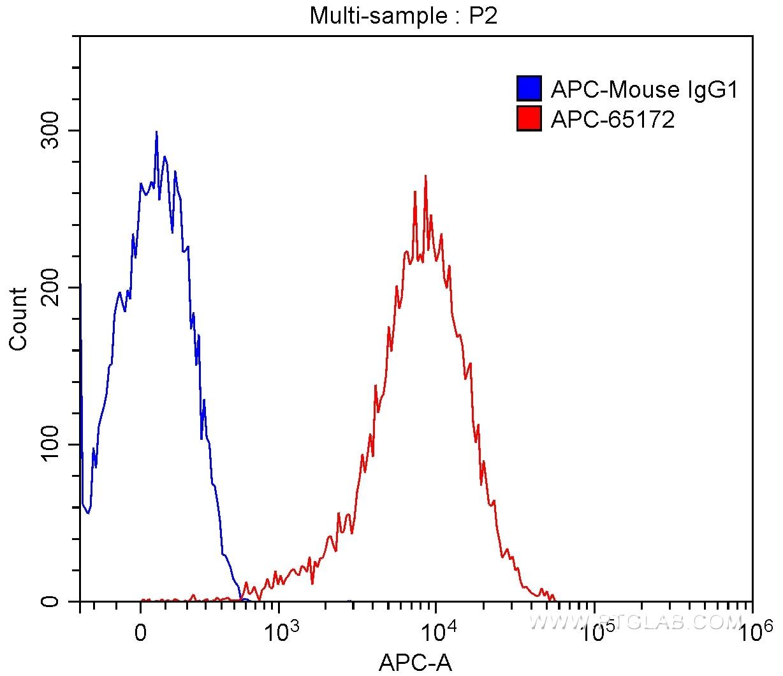 FC experiment of MOLT‑4 using APC-65172