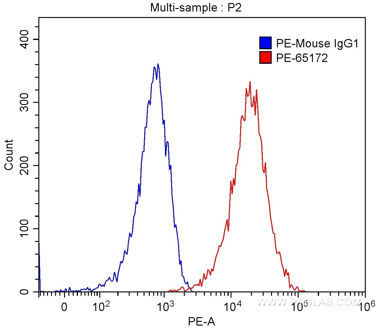 FC experiment of MOLT‑4 using PE-65172
