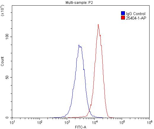FC experiment of U-937 using 25404-1-AP