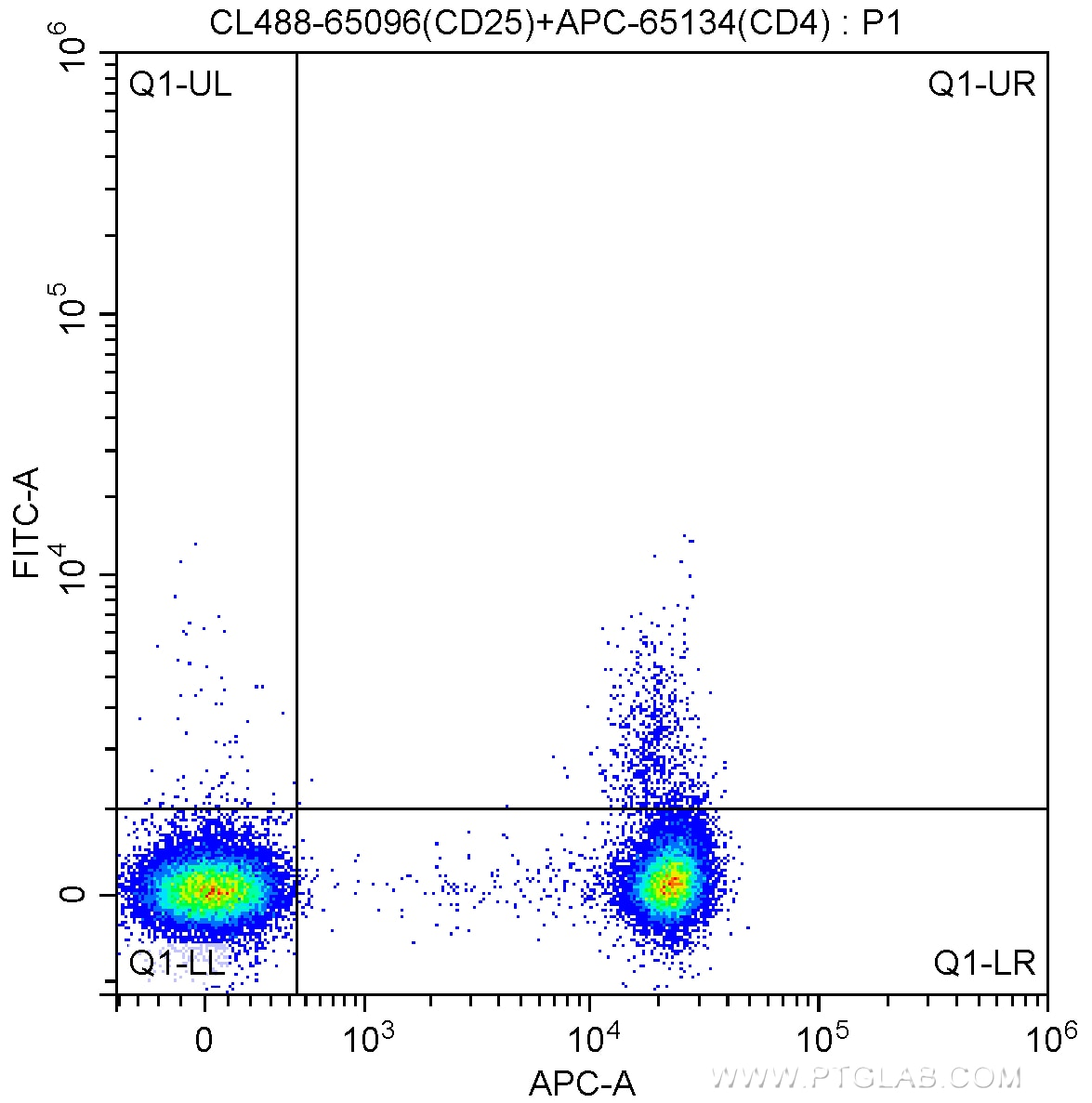 FC experiment of human peripheral blood lymphocytes using CL488-65096