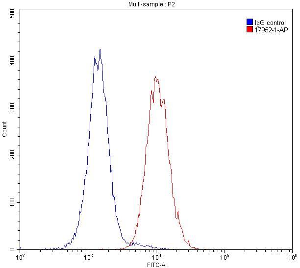 FC experiment of Raji using 17952-1-AP
