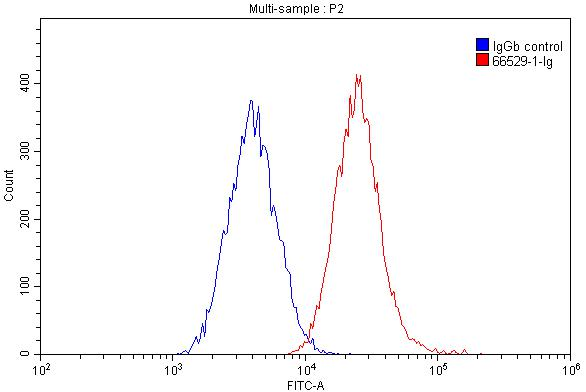 FC experiment of THP-1 using 66529-1-Ig