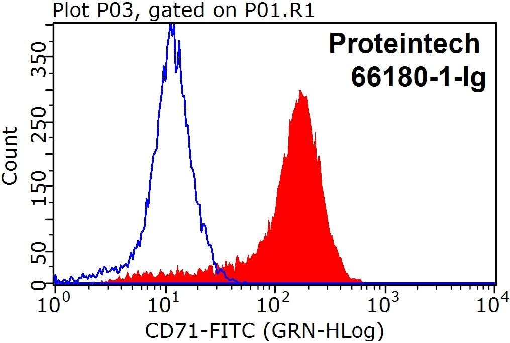 FC experiment of Raji using 66180-1-Ig