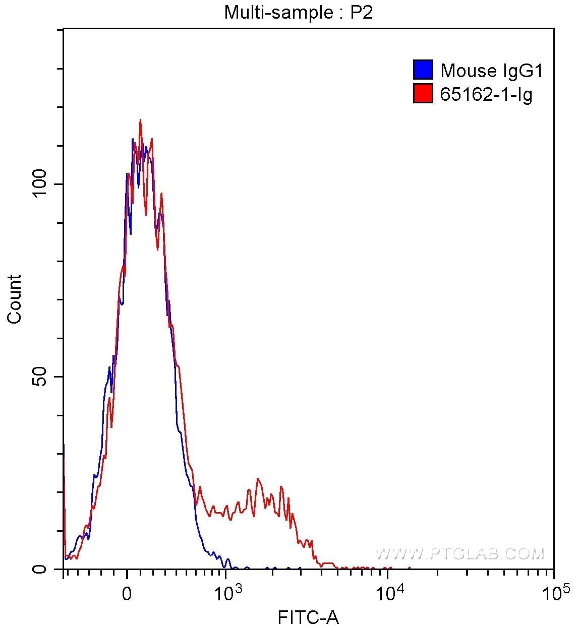 FC experiment of human peripheral blood lymphocytes using 65162-1-Ig