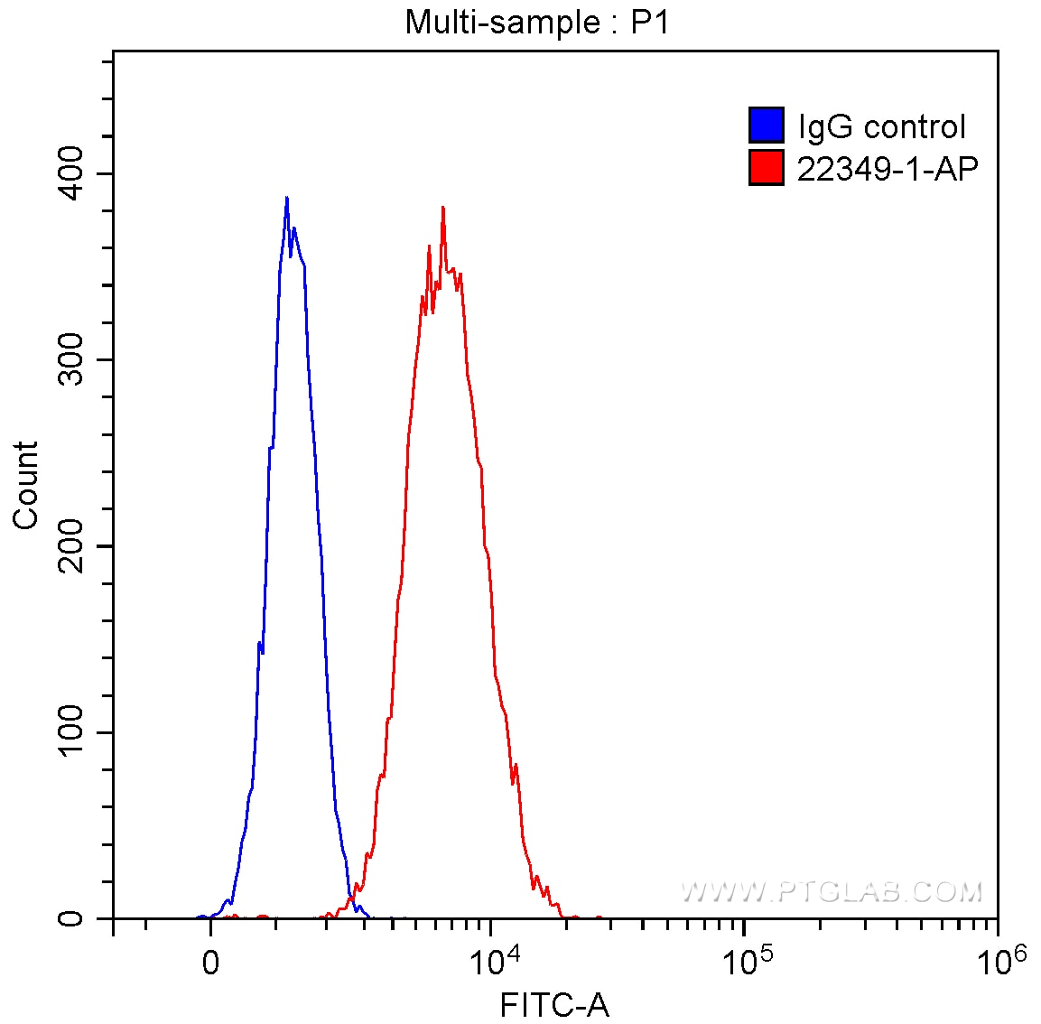 FC experiment of Raji using 22349-1-AP