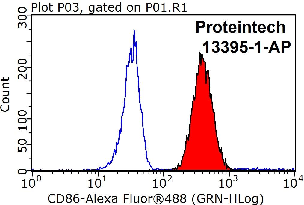 FC experiment of Raji using 13395-1-AP