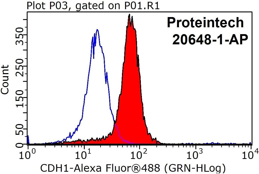 FC experiment of HepG2 using 20648-1-AP