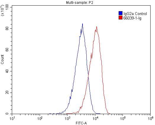 FC experiment of HeLa using 66039-1-Ig