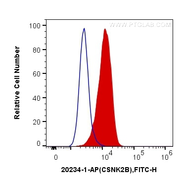 FC experiment of HeLa using 20234-1-AP