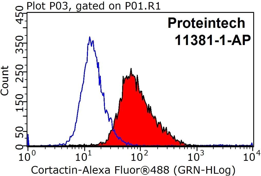 FC experiment of HeLa using 11381-1-AP