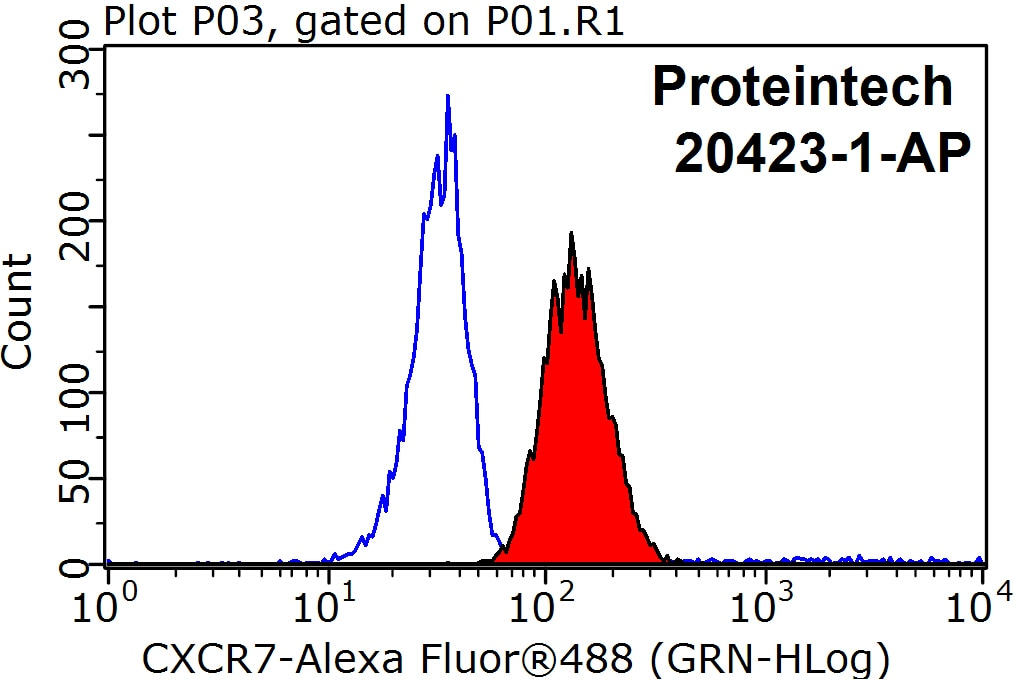 FC experiment of Raji using 20423-1-AP