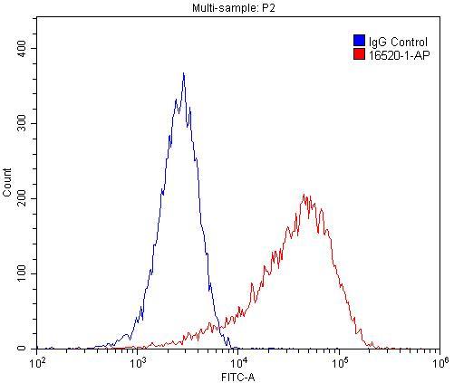 FC experiment of C2C12 using 16520-1-AP