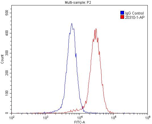 FC experiment of SH-SY5Y using 20310-1-AP