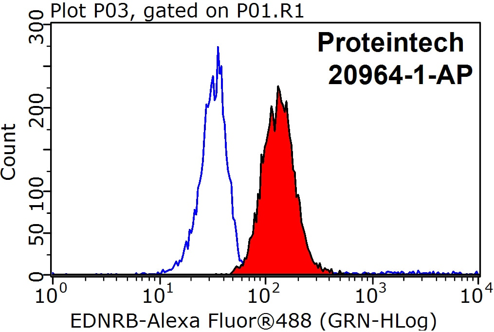 FC experiment of Raji using 20964-1-AP