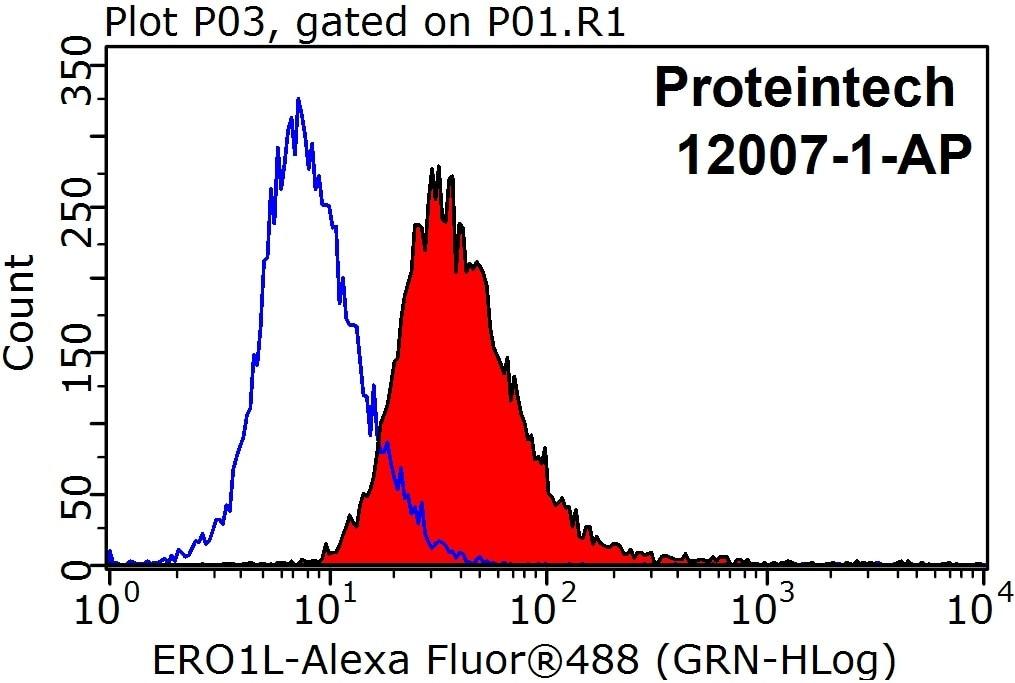 12007-1-AP;HeLa cells