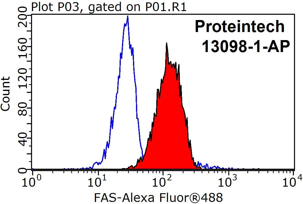 FC experiment of Jurkat using 13098-1-AP