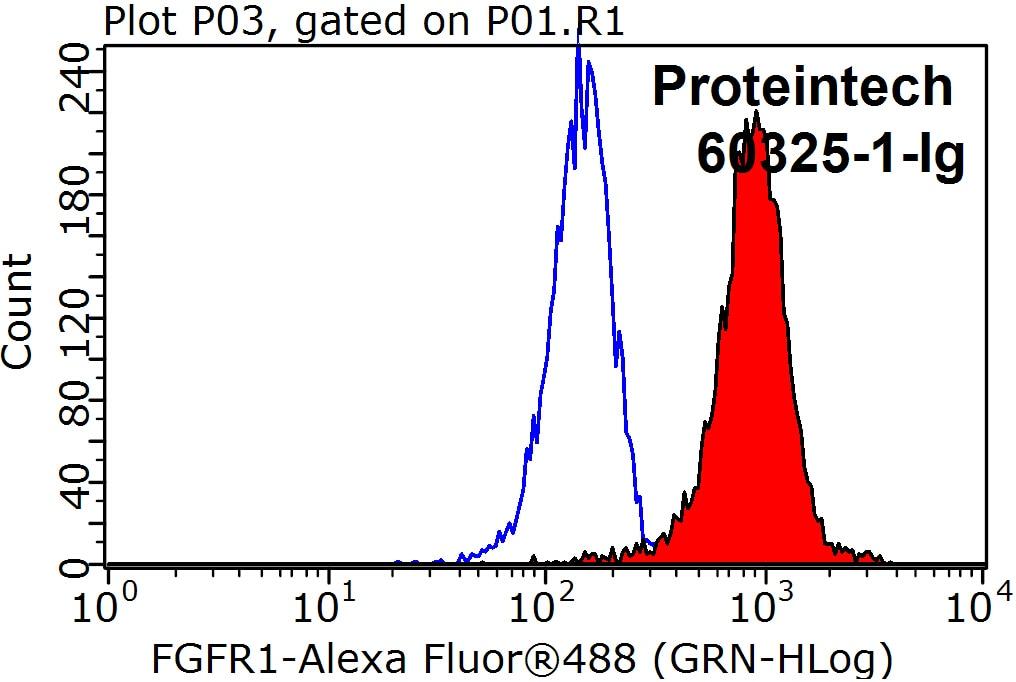 FGFR1 Monoclonal antibody