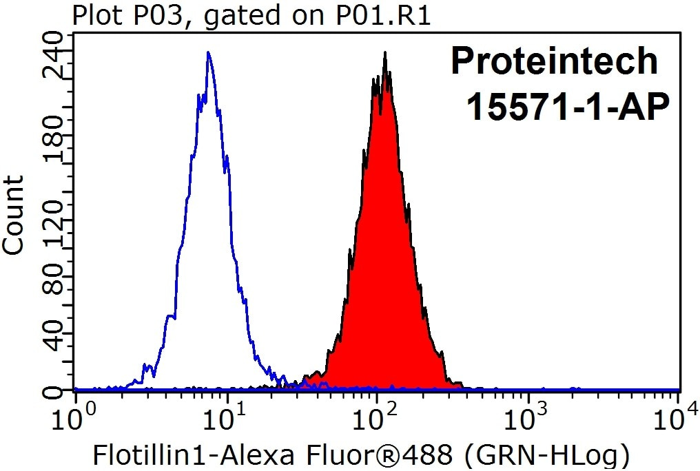 FC experiment of HeLa using 15571-1-AP