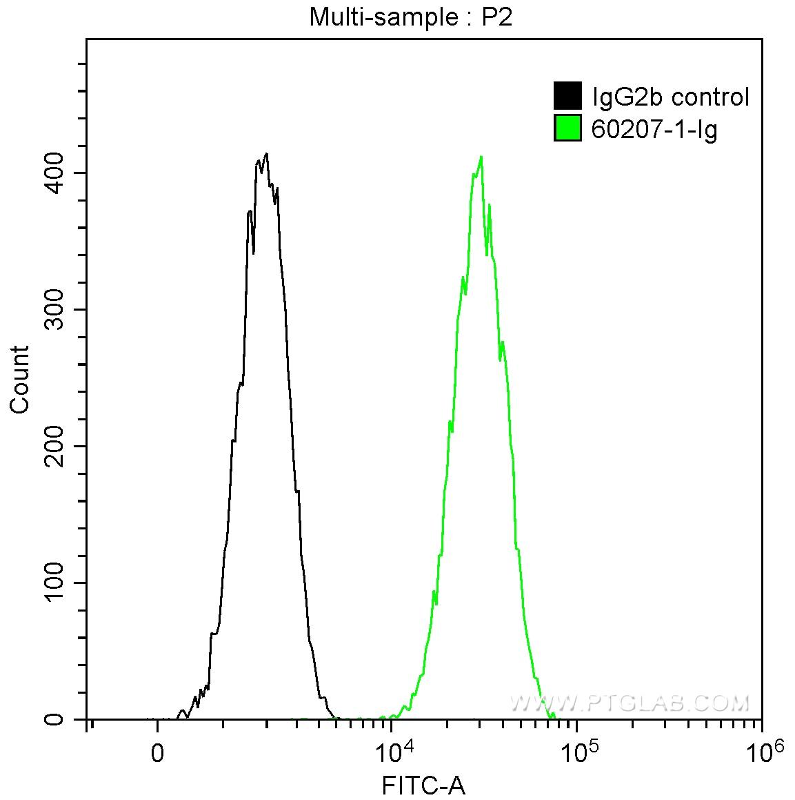 FC experiment of HeLa using 60207-1-Ig