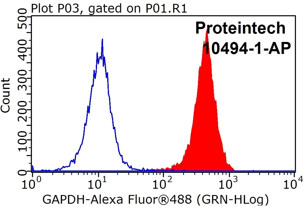 FC experiment of HEK-293 using 10494-1-AP