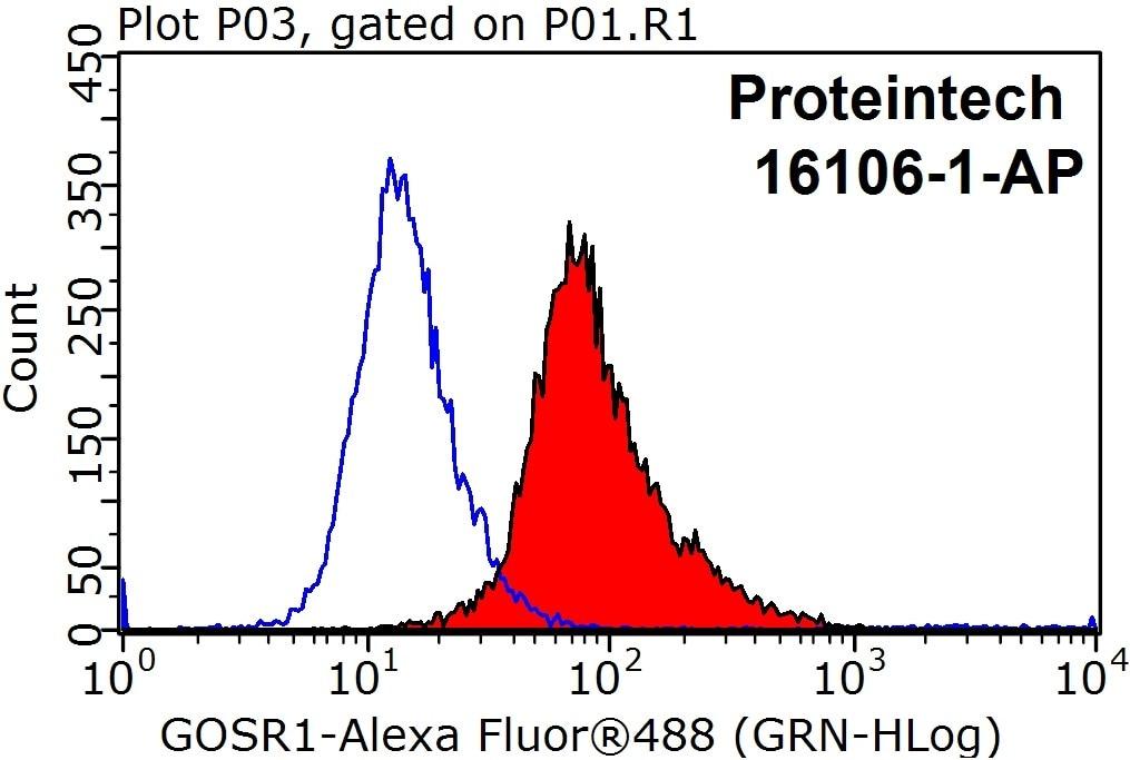 FC experiment of HeLa using 16106-1-AP