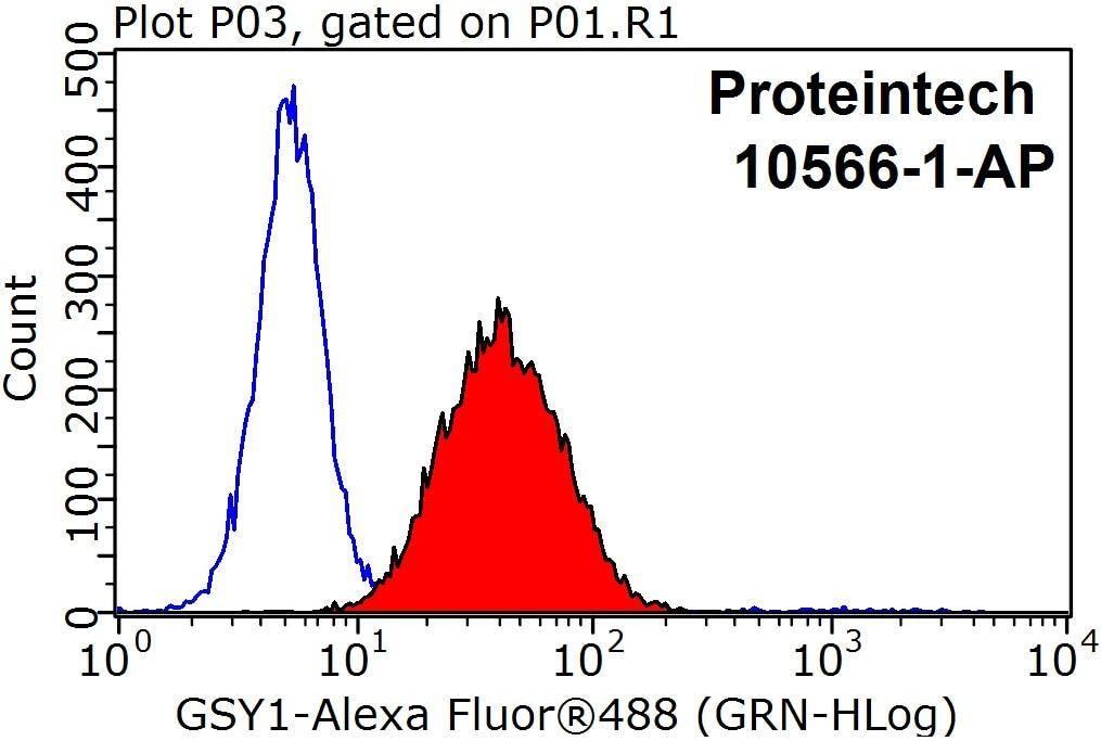 10566-1-AP;HepG2 cells