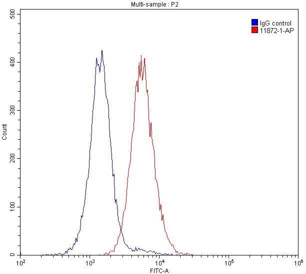 FC experiment of Raji using 11872-1-AP