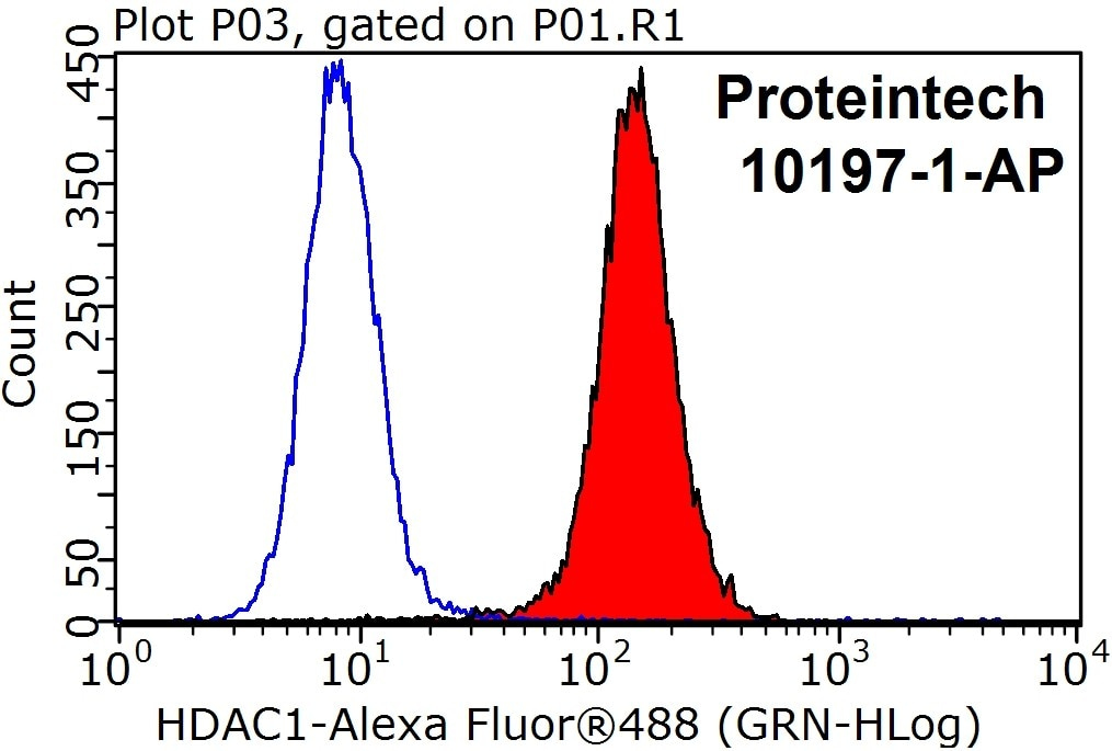 1X10^6 HeLa cells were stained with the 0.2ug HDAC1 antibody (10197-1-AP, red) and a control antibody (blue). Fixed with 90% MeOH blocked with 3% BSA (30 min). Alexa Fluor 488-conjugated AffiniPure Goat Anti-Rabbit IgG (H+L) at a dilution of 1:1000