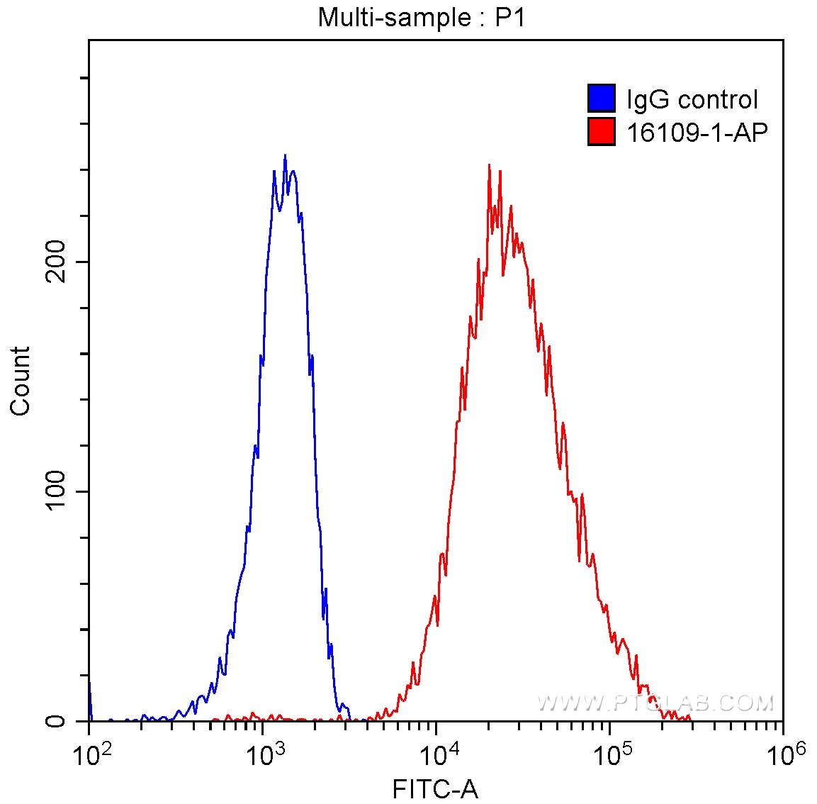 FC experiment of Raji using 16109-1-AP