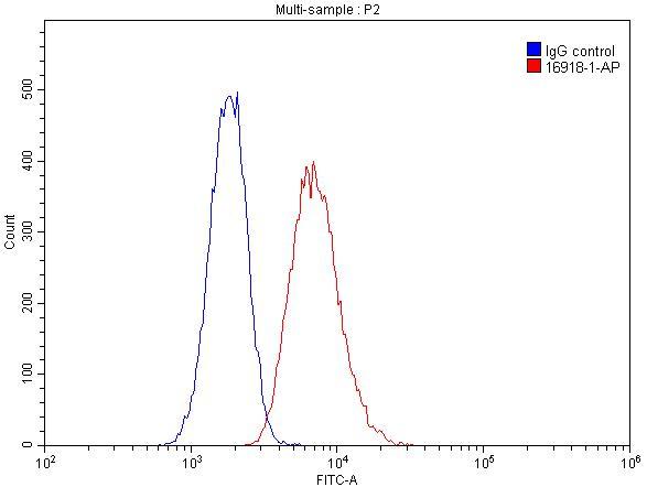 FC experiment of Raji using 16918-1-AP