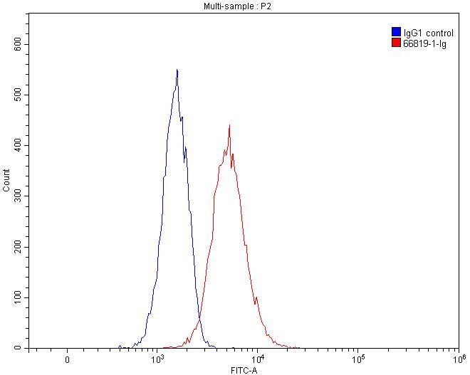 FC experiment of Raji using 66819-1-Ig