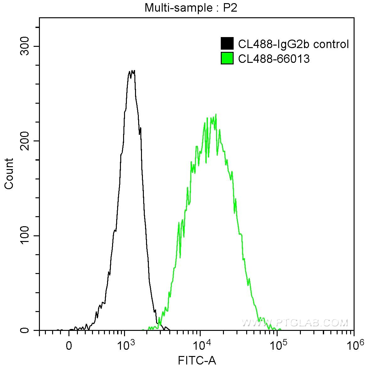FC experiment of Raji using CL488-66013