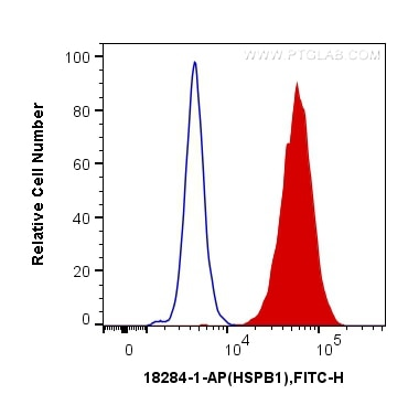 FC experiment of MCF-7 using 18284-1-AP