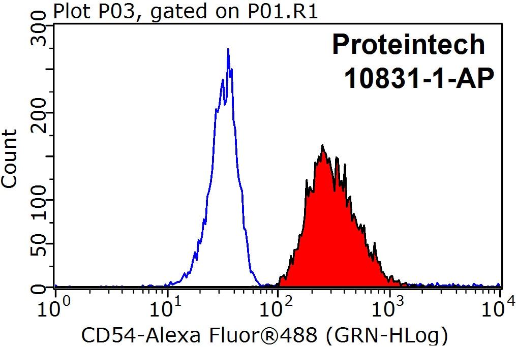 FC experiment of Raji using 10831-1-AP