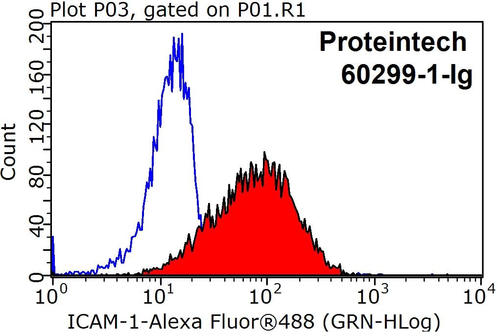 FC experiment of Raji using 60299-1-Ig