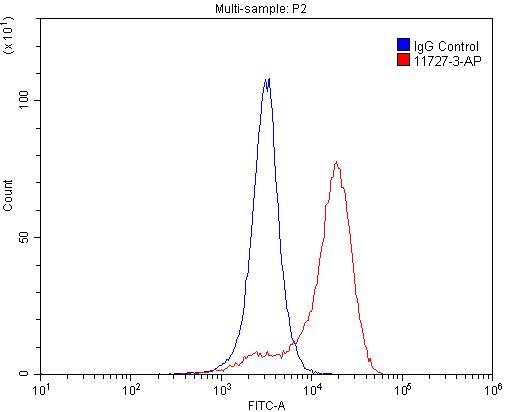 FC experiment of K-562 using 11727-3-AP