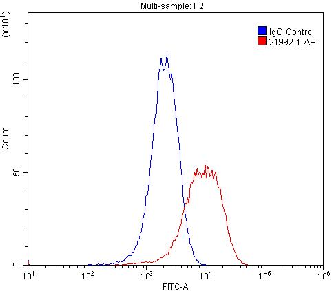 FC experiment of PC-3 using 21992-1-AP